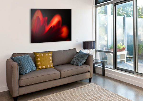 RED ROSE DANIEL THIBAULT ARTISTE-PHOTOGRAPHE  Canvas Print