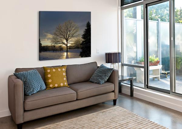 WINTER OAK BRIAN CAMILLERI PHOTOGRAPHY  Canvas Print