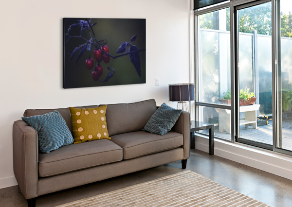 NIGHTSHADE CHRIS COULING  Canvas Print