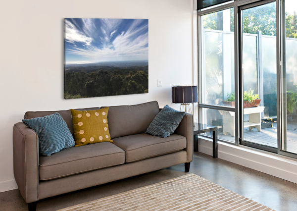 IMG 20170104 WA0051 CHAAKU  Canvas Print
