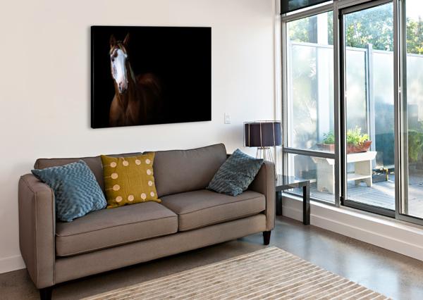 STUDIO HORSES VICTOR ROSE PHOTO  Canvas Print