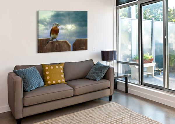 BLUEBIRD IN SUN CONNIE MAHER  Canvas Print