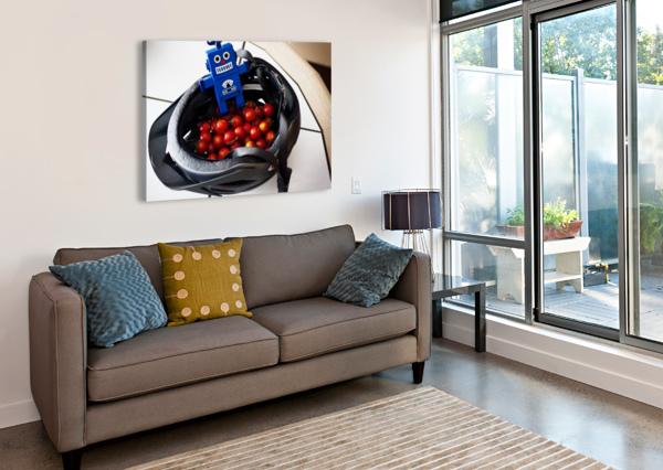 ROBOT BIKE HELMET TOMATOES ANDREW WOOLNER  Canvas Print