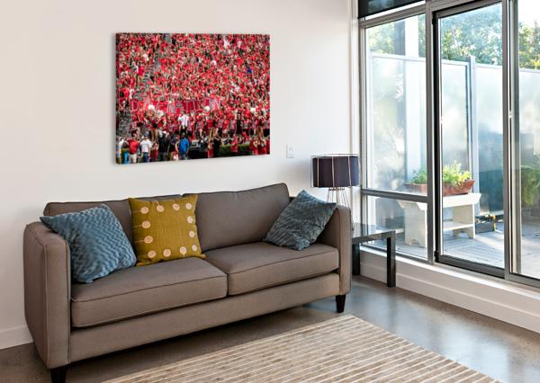UNIVERSITY OF GEORGIA FOOTBALL   ATHENS GA 3137 @THEPHOTOURIST  Canvas Print