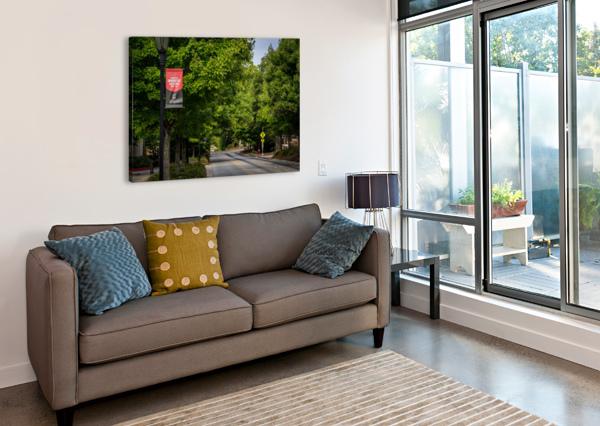 UNIVERSITY OF GEORGIA   ATHENS GA 9434 @THEPHOTOURIST  Canvas Print