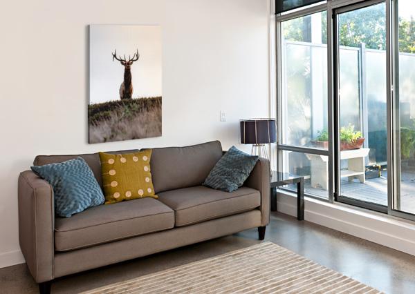 TULE ELK ON TOP OF A HILL DAVID YOON  Canvas Print