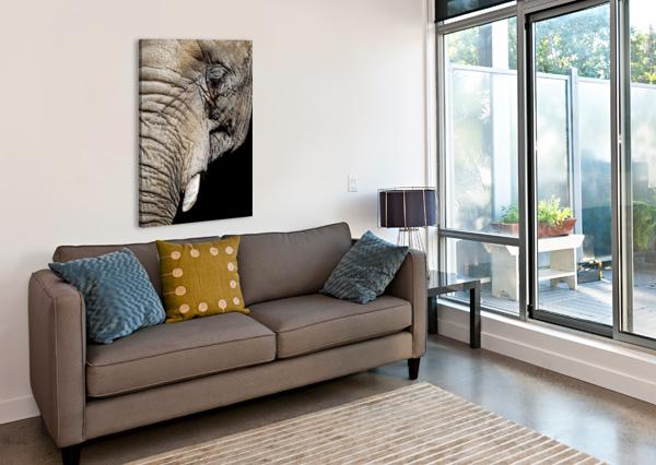 ELEPHANT CLOSE UP DAVID YOON  Impression sur toile