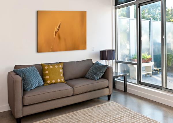GOLDEN HOUR GRASS DAVID YOON  Canvas Print