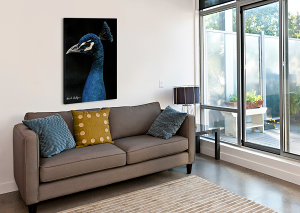 PEACOCK PORTRAIT BRINDA CHELLAPPAN  Canvas Print