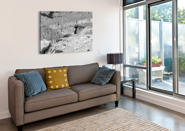 GRAND CANYON SOUTH RIM ANTHONY M FARBER  Canvas Print