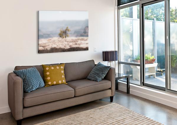 DESERT SHRUB GRAND CANYON 2 ANTHONY M FARBER  Canvas Print