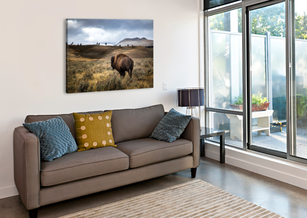 STORMY BISON CHRIS STAHL PHOTOGRAPHY  Canvas Print