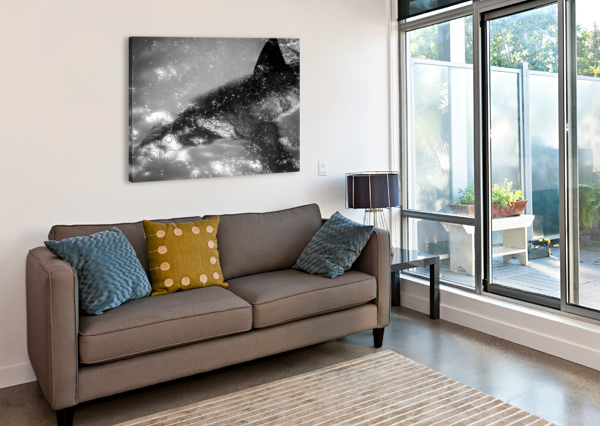 THE BEAUTY AND BEAST BENEATH CHRIS STAHL PHOTOGRAPHY  Canvas Print
