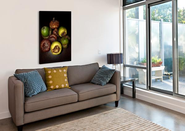 ACORN ARRANGEMENT BOTANICALART CA  Canvas Print