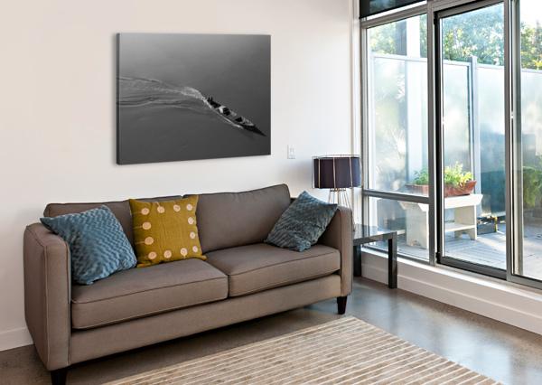 BOAT ARASH AZARM  Canvas Print
