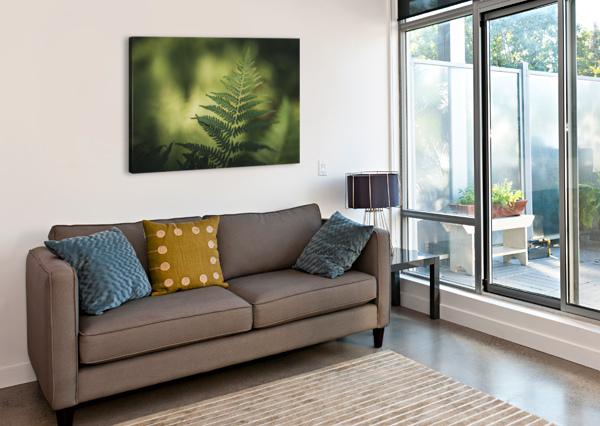 GREEN AS THE FERN  MAREK PIWNICKI  Canvas Print