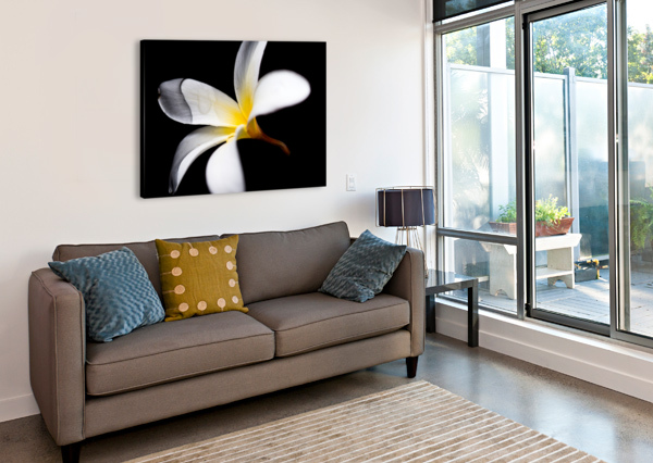 SIMPLICITY ANDRES BLASQUEZ MOTA VELASCO  Canvas Print