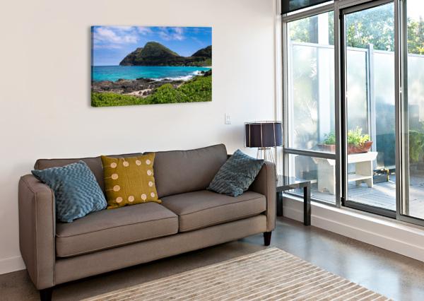 HAWAII MOUNTAIN CLIFF ON COAST BOBBY TWILLEY JR  Canvas Print