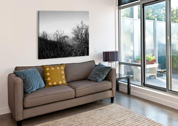 CALIFORNIA CLOUDS THROUGH MOUNTAIN BRUSH IN B&W BOBBY TWILLEY JR  Canvas Print