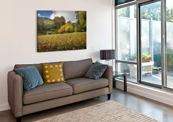 AUTUMN AT CRAIG-Y-NOS COUNTRY PARK  LEIGHTON COLLINS  Canvas Print