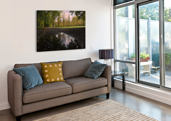 AUTUMN REFLECTIONS IN A FIELD LEIGHTON COLLINS  Canvas Print