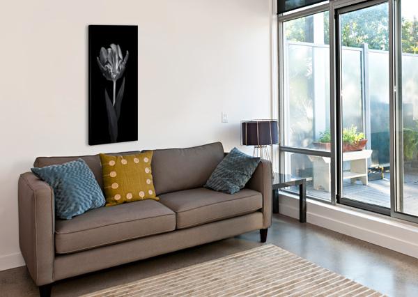 RCOCO TULIP, SIDE VIEW ASSAF FRANK  Canvas Print