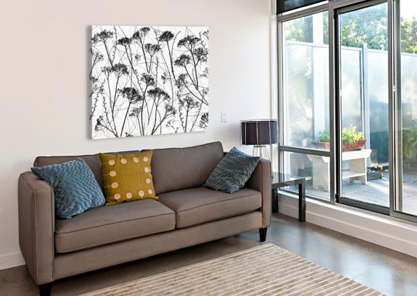 SILHOUETTE OF DRIED PLANTS ASSAF FRANK  Canvas Print