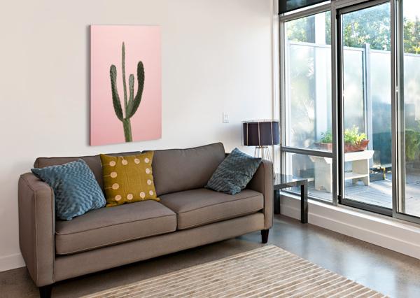 CACTUS PLANT ASSAF FRANK  Canvas Print