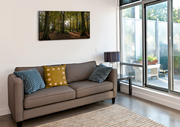 AUTUMN FOREST ADRIAN BROCKWELL  Canvas Print