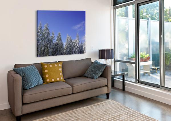 FIRST SNOW 360 STUDIOS  Canvas Print