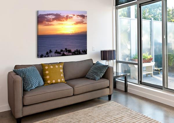 GOLDEN HAWAII 360 STUDIOS  Canvas Print