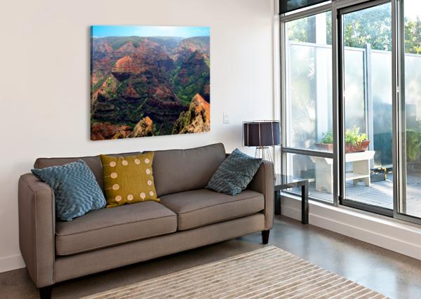 RUGGED KAUAI 360 STUDIOS  Canvas Print
