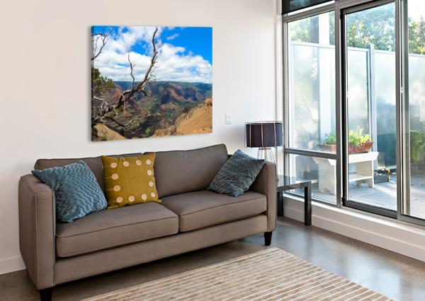WILD KAUAI 2 360 STUDIOS  Canvas Print