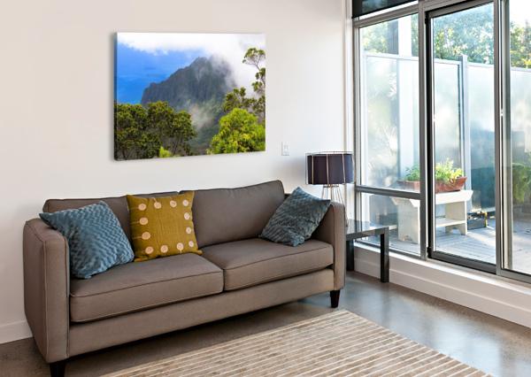 WILD KAUAI 3 360 STUDIOS  Canvas Print