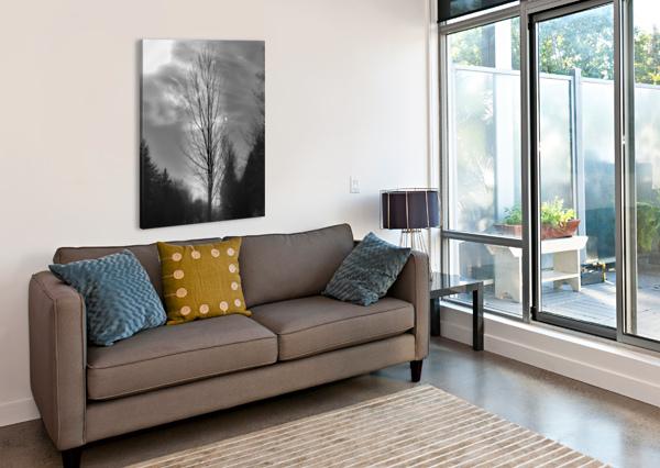 ASSOMBRI ANNIESTPIERREARTISTEPHOTOGRAPHE  Canvas Print