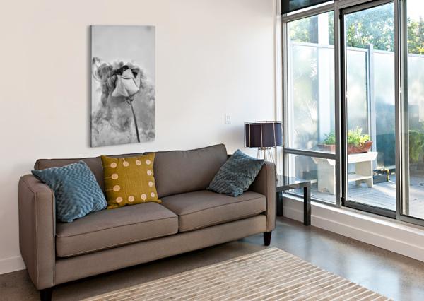 NOSTALGIE ANNIESTPIERREARTISTEPHOTOGRAPHE  Canvas Print