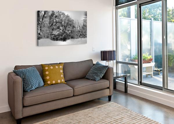 OBSCUR ANNIESTPIERREARTISTEPHOTOGRAPHE  Canvas Print