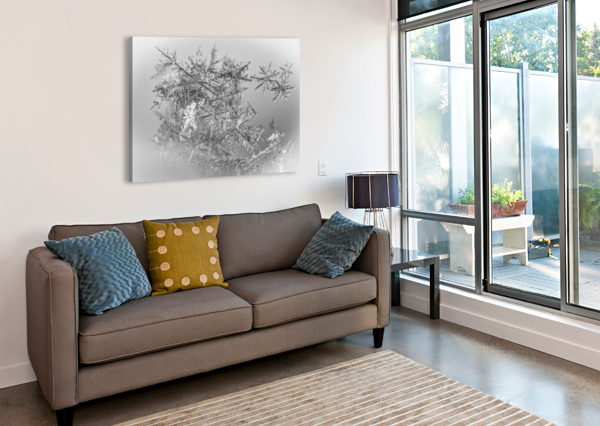 POINTE ANNIESTPIERREARTISTEPHOTOGRAPHE  Canvas Print