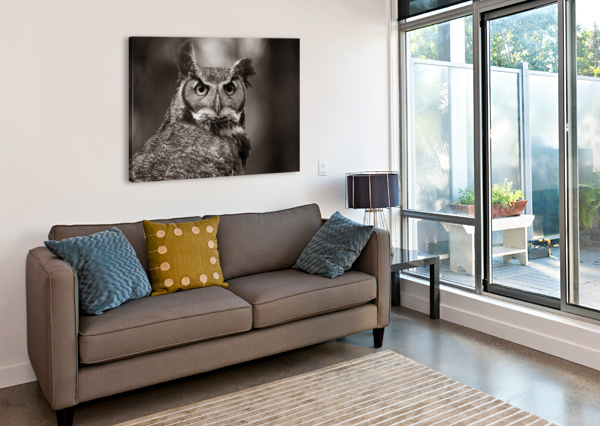 GREAT HORNED OWL AP 2860 B&W ARTISTIC PHOTOGRAPHY  Canvas Print