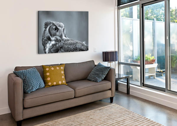 GREAT HORNED OWL AP 2861 B&W ARTISTIC PHOTOGRAPHY  Canvas Print