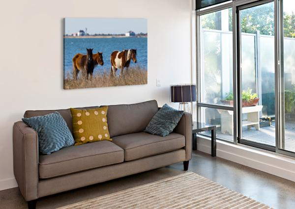 WILD HORSES AP 2796 ARTISTIC PHOTOGRAPHY  Canvas Print