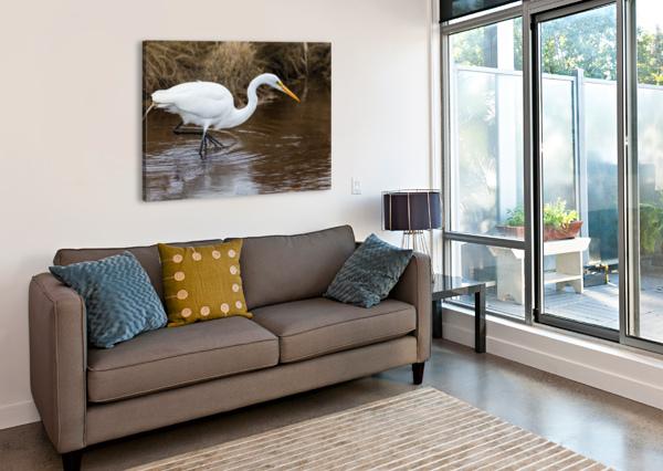 GREAT WHITE EGRET AP 2802 ARTISTIC PHOTOGRAPHY  Impression sur toile