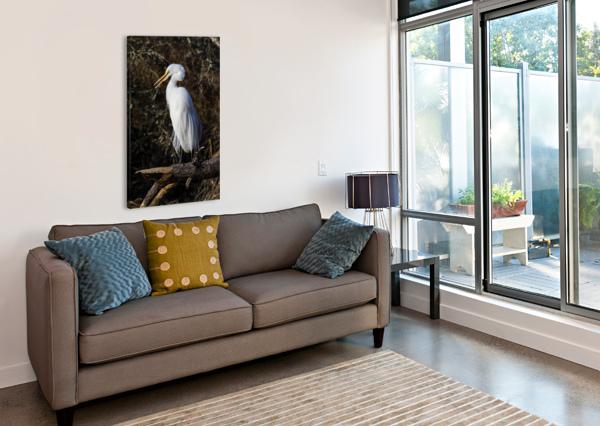 GREAT WHITE EGRET AP 2765 ARTISTIC PHOTOGRAPHY  Canvas Print