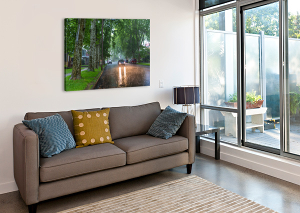 SUMMER RAIN AP 2892 ARTISTIC PHOTOGRAPHY  Canvas Print