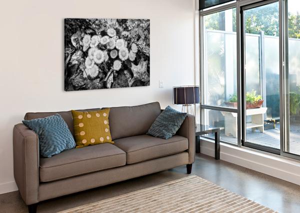 FLOWERS AP 2222 B&W ARTISTIC PHOTOGRAPHY  Canvas Print