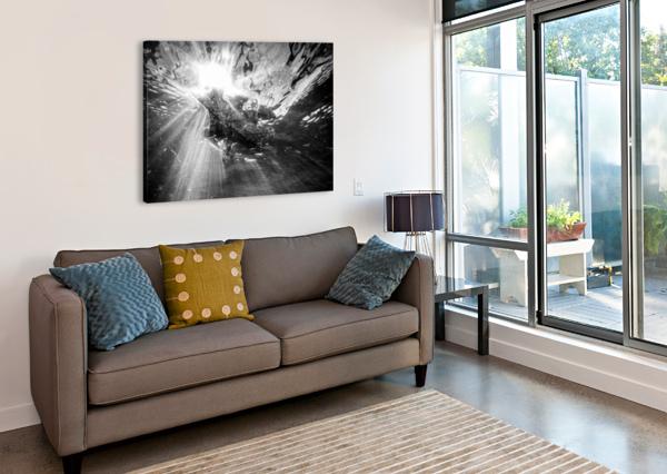 SUNLIGHT AP 2048 B&W ARTISTIC PHOTOGRAPHY  Canvas Print