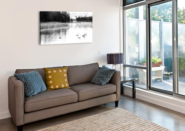 SWAN FAMILY AP 2694 B&W ARTISTIC PHOTOGRAPHY  Canvas Print