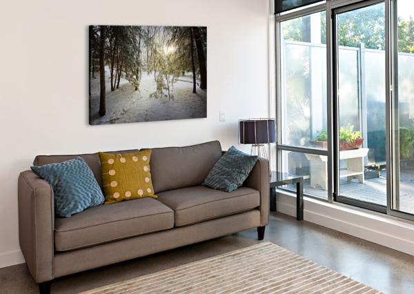 SUNLIGHT AP 2731 ARTISTIC PHOTOGRAPHY  Canvas Print