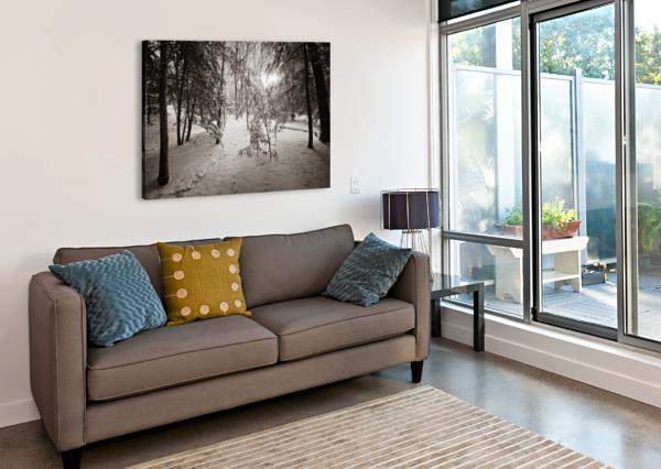 SUNLIGHT AP 2731 B&W ARTISTIC PHOTOGRAPHY  Canvas Print