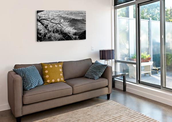 SPLASH ICICLES AP 2147 B&W ARTISTIC PHOTOGRAPHY  Canvas Print